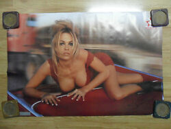 Sexy Girl Dorm Poster Playboy Playmate Pam Pamela Anderson Red Car