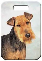 Set of 2 Welsh Terrier Luggage Tags