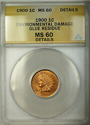 1900 Indian Head Cent 1c Coin Anacs Ms-60 Details Environmental Damage Glue Res.