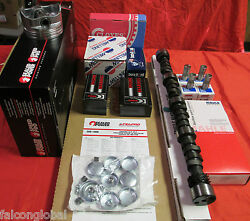 Ford 390 Car Master Engine Kit Pistons Moly Double Timing Rv Cam 1966-70 No Op