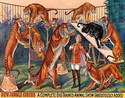 NEW JUNGLE CIRCUS BIG TRAINED ANIMAL SHOW TIGERS VINTAGE POSTER REPRO FREE S H