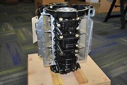 New Evinrude Outboard 175hp Cylinder And Crankcase 5006120 2006 Block
