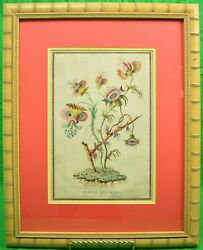 Fleurs Des Indes Hand-colour 18thc Plate By Jacques Charton In Bamboo Frame