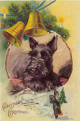 Scottish Terrier Dog w NAST SANTA 1930s Lucy Dawson New LARGE Blank Note Cards
