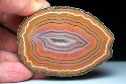 Rough Agate / Achat Nodule Half Chinese Fighting Blood Agate Agbox38-01 Xuanhua