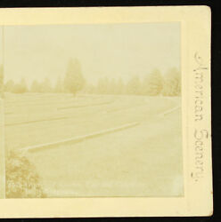 Webster And Albee American Scenery Stereoview Graves Of Knowns Gettysburg