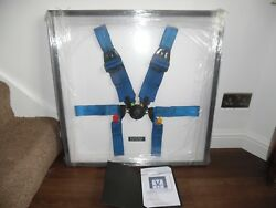 Framed Fernando Alonso Reanult Used Seat Belts Excellant Itemand Condition And Coa