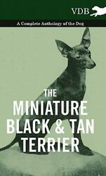 The Miniature Black And Tan Terrier - A Brand New Free shipping in the US