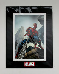 The Amazing Spider-man 520 Comic Book Cover Artwork Matted Lithograph Marvel Art