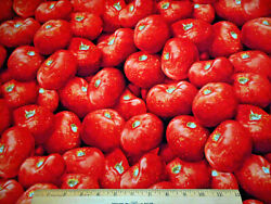 Cotton Fabric 1 7/8 Yard Fresh Packed Tomatoes Rjr Farmers Market Quilting