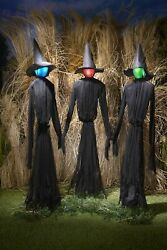 Light Up Witches Halloween Yard Decorations with LED Lights Set of 3