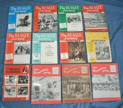 Vintage Beagle Dog Hunting Magazine Lot 12 Back Issues THE BEAGLE JOURNAL 1950#x27;s