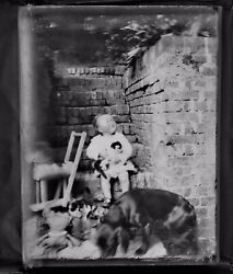 Rare Antique Glass 1/4 Plate Photograph Negative Child With Cats Dog And Toy Horse
