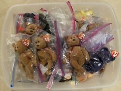624 Beanie Babies 1993-1999 Retired Vintage Mint Condition All With Ty Hang Tags