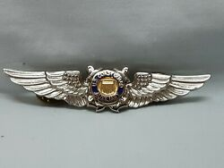 United State Coast Guard Auxiliary Air Crew Winged Large Pin With Clutch Back
