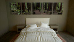 Redwood Tree Panoramic Canvas Print, 5 Panel Forest Pano, Armstrong Redwoods Ca