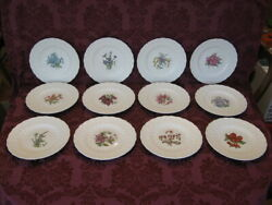 Spode Bermuda Flowers China Luncheon Plates - Set Of Twelve 12 - Excellent