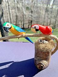 Key West Jimmy Buffet Macaw Parrots Nest Of Eggs Statue 6x7 Wooden Carved ❤️tb5m