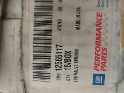 Gm Performance Parts Ls6 Valve Springs Discontinued