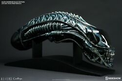 Alien Warrior Blue Edition Life-size Coolprops - Sideshow Collectibles 107