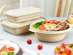 Biodegradable Plastic Food Box Container With Lid Eco Friendly No Paper Bento