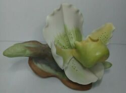 Limited Edition Burgues Porcelain Yellow/green/white Orchid Flower Sculpture
