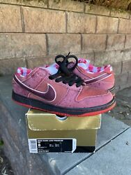 Nike Sb Dunk Low Premium X Concepts Red Lobster 313170-661 Size Us 8 W/ Box