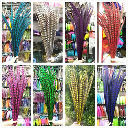 Wholesale 50-100pcs 16-44 Inch/40-110cm Lady Amherst Pheasant Tail Feather