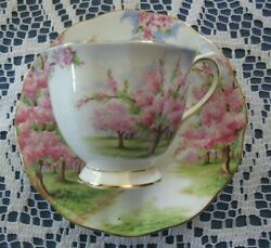 Royal Albert Blossom Time Pattern Tea Cup Saucer Set - Hard To Find - Buy It Now
