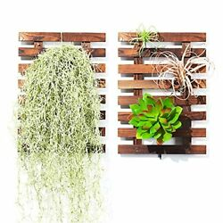 MEQILIN Wall Planters Wooden Hanging Air Plant LadderOrchid Rack PlanterWall...