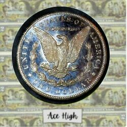 1884-cc Deepest Cameo Ever Morgan From Bank Bag Ace High Lm182