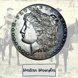 1884-s Very Rare Aaa+++ Morgan From Bank Bag Western Wrangler Lm237