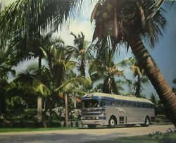 Greyhound Bus Line Advertising Poster Miami Palm Trees 50s High Gloss Thick Card