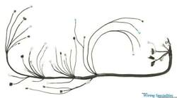 Wiring Specialties Engine Tranny Harness For 2jzgte Vvti Into R33 Gts