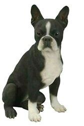 Realistic Life Size Boston Terrier Statue Glass Eyes Detailed Sculpture