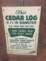 1 Of A Kind 5and039 Western Red Cedar Giant Cookie Own A Piece Of History Live Edge