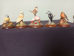 Border Fine Arts Collection Of Five Wild Bird Figurines All Good Condition1