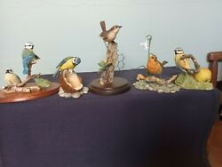 Border Fine Arts Collection Of Five Wild Bird Figures Blue Tits Robin And Wren