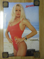 Sexy Girl Dorm Poster 24 x 36 Pam Pamela Anderson Baywatch TV Show Red Swimsuit