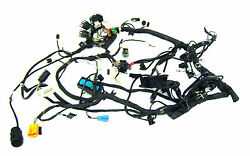 Bmw 2004 R1150rt R1150 Rt Abs Main Electrical Wire Wiring Harness - 6685 Miles