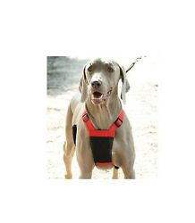 Sporn Non Pulling Mesh Harness for Dog Total control Style Fits like a glove