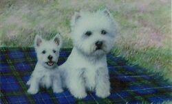 West Highland White terrier Wallet