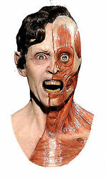 Human Error Resurrection Face Mask Sculpted And Hand Painted Halloween Distortions