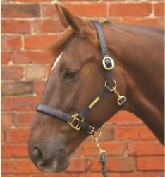 Hy Leather Head Collar for Horses & Ponies Brown Black Various Sizes 1585P