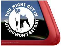 You Might Get In But… Funny Boxer Guard Dog Vinyl Window Decal