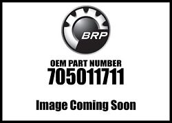 Can-am Painted Tmeless Black Rh Rear Panel 705011711 New Oem