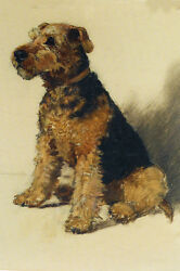 Cute Welsh Terrier Dog Vintage Drawing  LARGE New Blank Note Cards