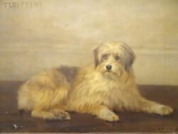 Huge 1905 Century English Terrier Dog Portrait