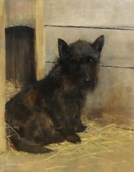 19th Century Portrait Of A Black Scottish Terrier Dog Samuel FULTON (1855-1941)