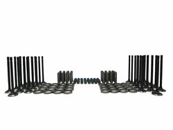 Chevygm 6.6l Duramax Intake And Exhaust Valves Valve Stem Seals Seats Guides